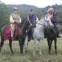 konie-bieszczady